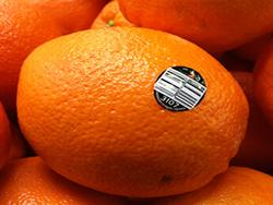 Etiquetas para Legumes